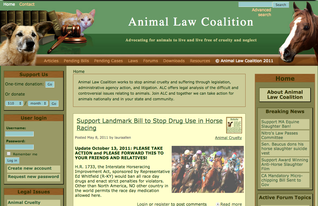 A screenshot of the live website, showing the custom theme, icons, and header.